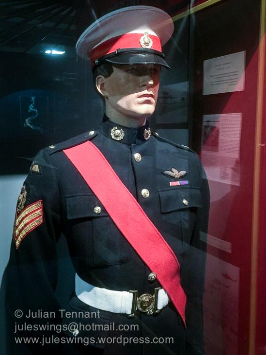Royal Marines pilot