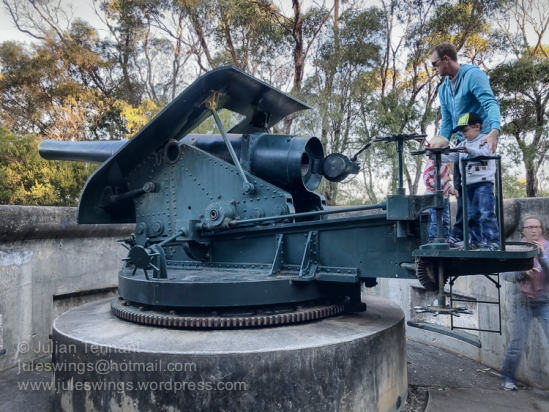 6 inch gun at the Princess Royal Fort