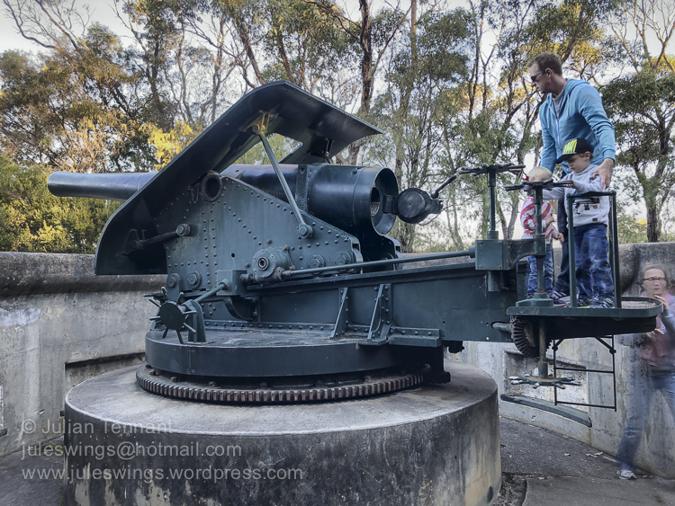 6 inch gun at the Princess Royal Fort