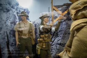 ANZAC Gallipoli trench display in the WW1 Gallery. Photo: Julian Tennant
