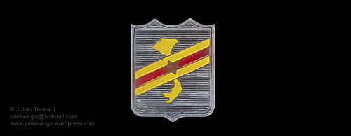 Cao Dai 1955 local made badge-01