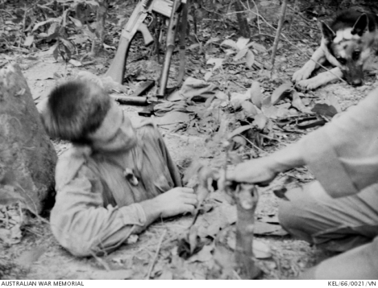A Sapper of 3 Field Troop emerges from a Viet Cong (VC) tunnel by way of a trapdoor in the ground ...