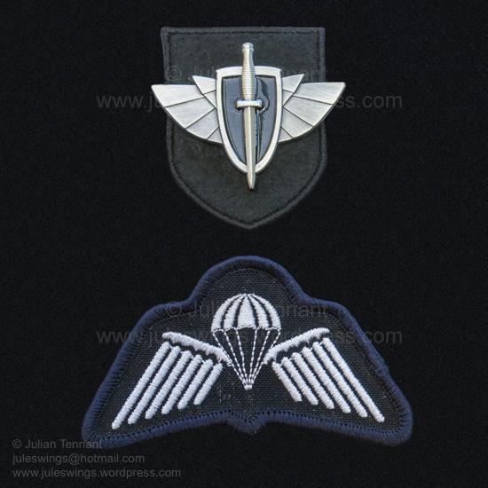 RAAF CCT insignia