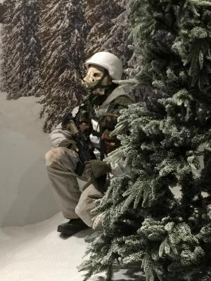 Winter warfare training. Photo: Julian Tennant
