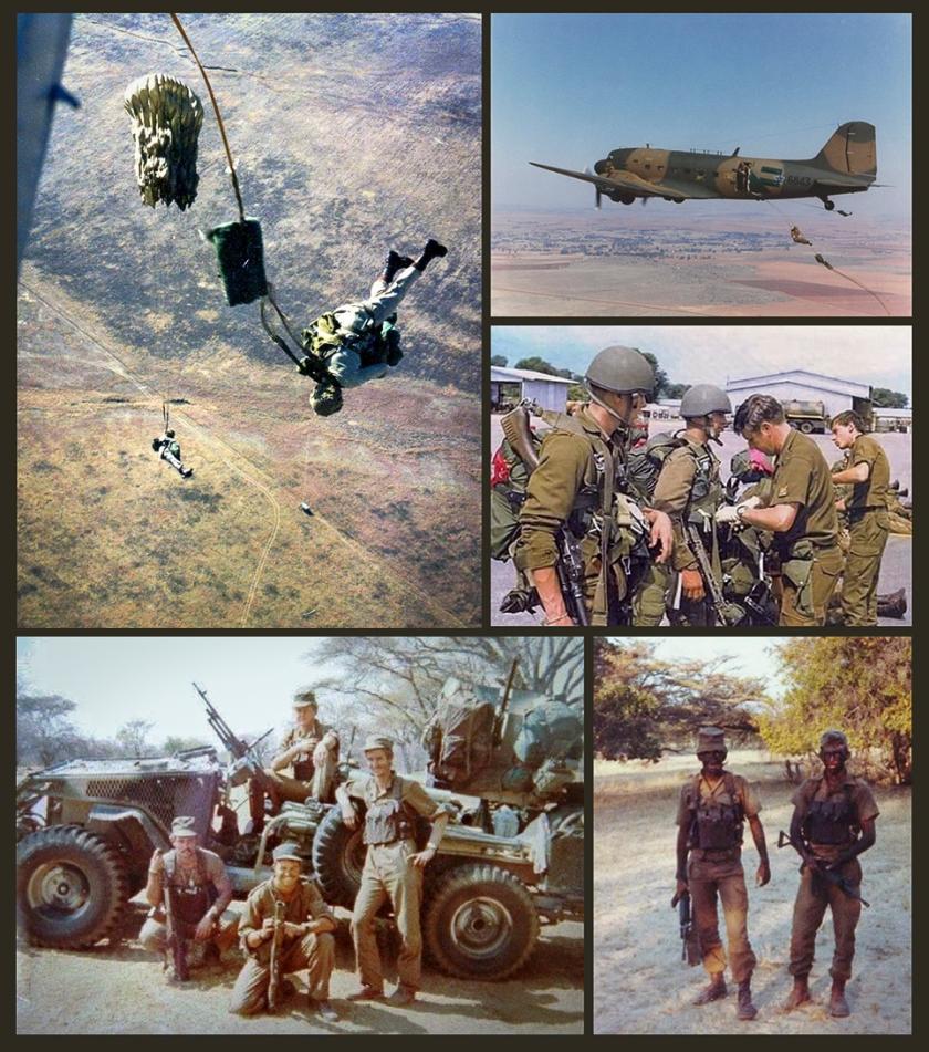 parabat juleswings collage-01