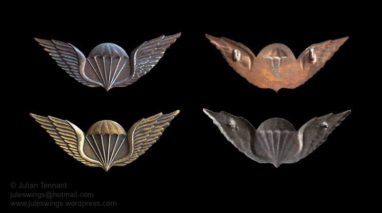 juleswings collection transkei airborne wings -2
