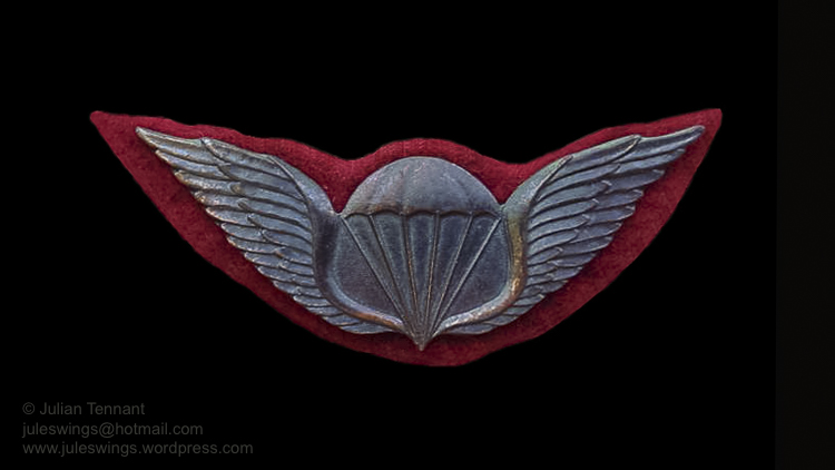 juleswings collection transkei airborne wings -3